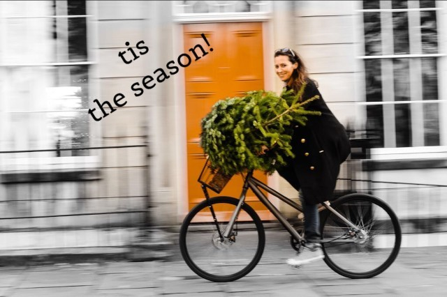 My Bike, the Tree & Me!!